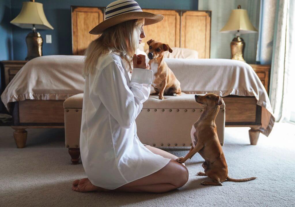 3 trucs faciles à enseigner à votre chien