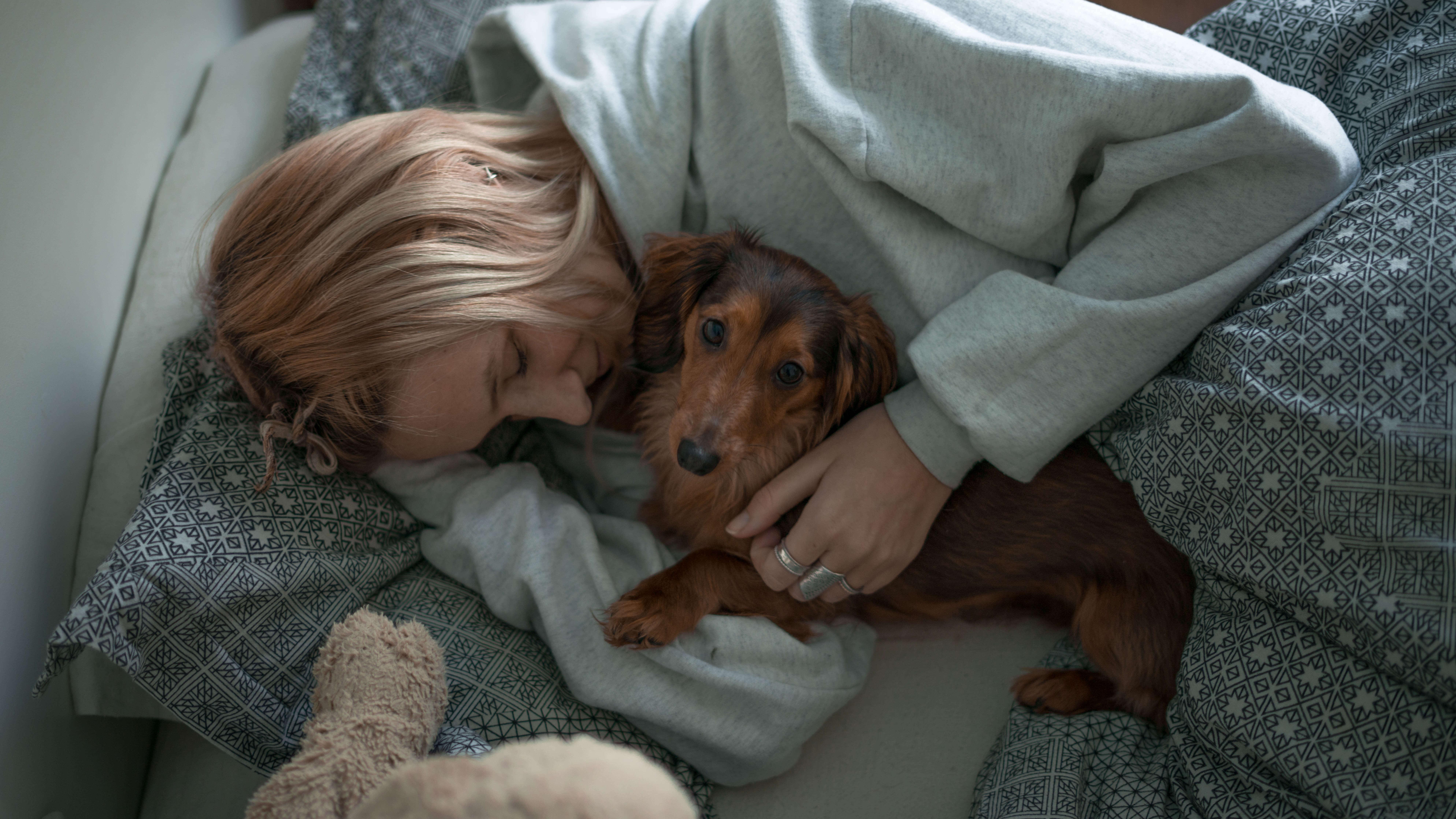 Chien Fait Ses Besoins La Nuit crocx - une bonne nuit de sommeil pour vous et votre chien